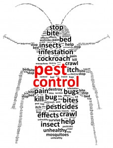 Pest Control Word Cloud